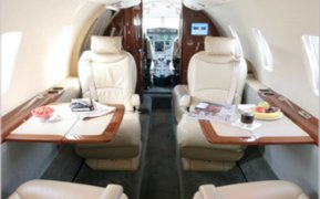 Citation XLS